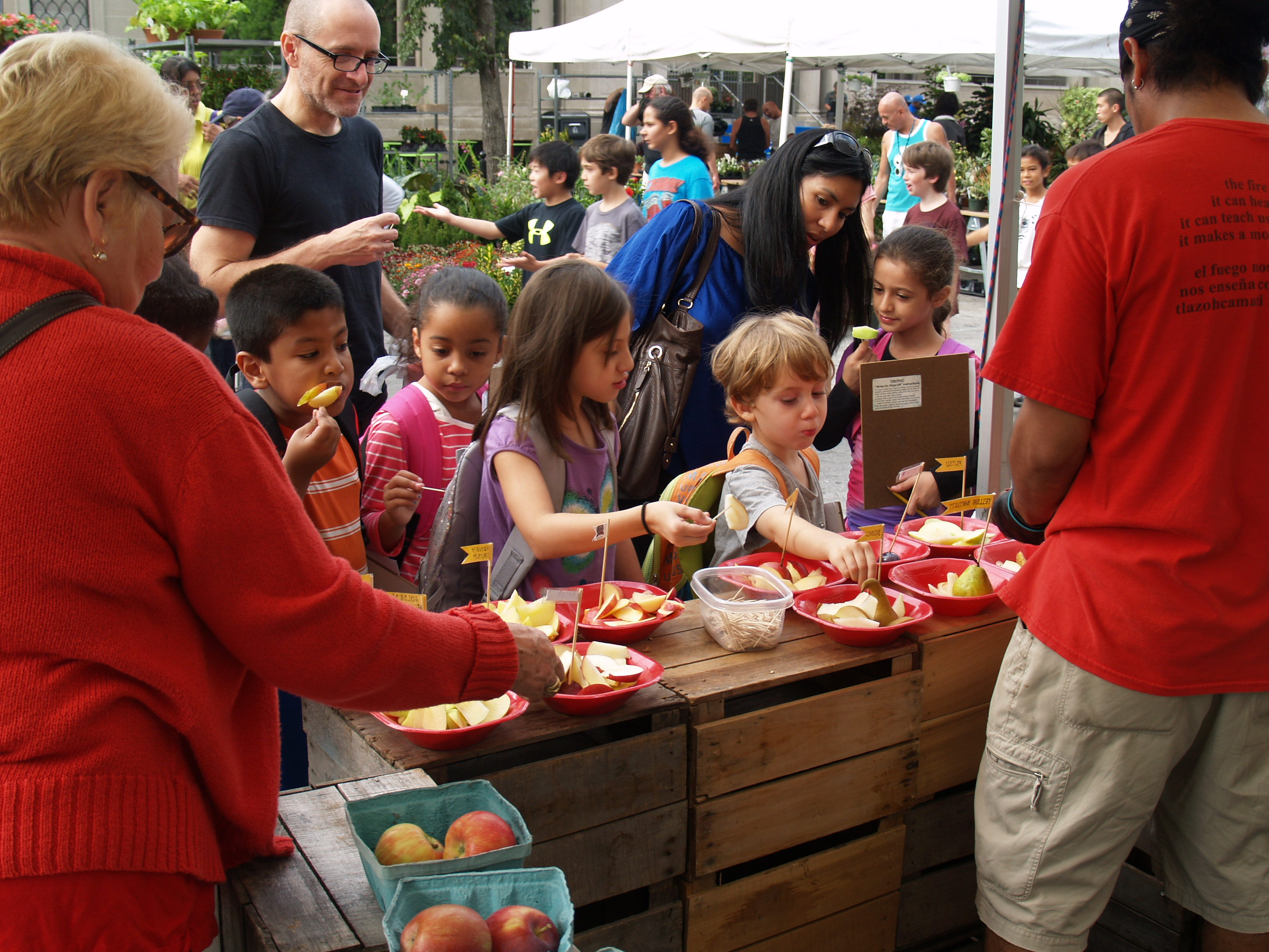 children reaching for apples to taste at a farmer's market booth